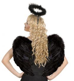 Černá křídla