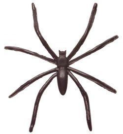 Balíček 50 černých pavoučků